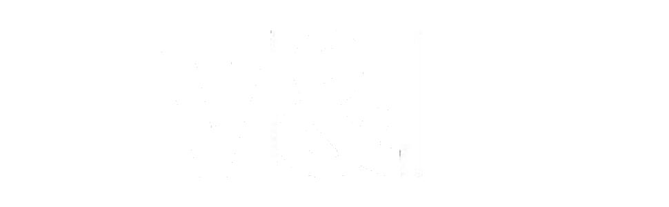 vyl logo
